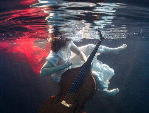 [Live Review] MUSICZINE | Lara Rosseel Band – Livestream